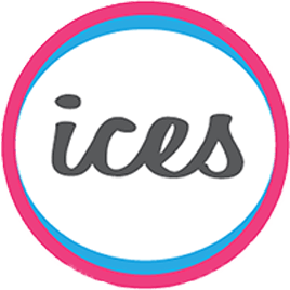 ices-bf.fr